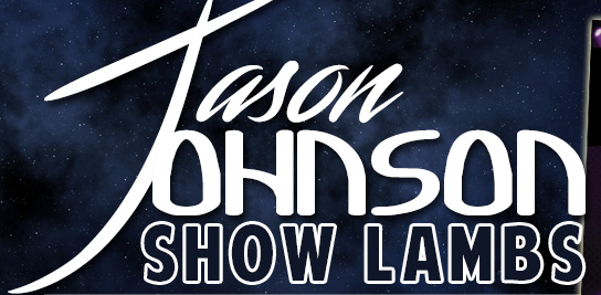 Jason Johnson Show Lambs